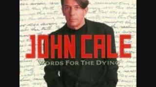 John Cale  Riverbank