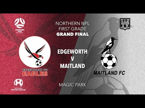 2019 NPL Northern NSW - Grand Final - 1st Grade - Edgeworth FC v Maitland FC