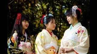 Обзор Японии от турагентства