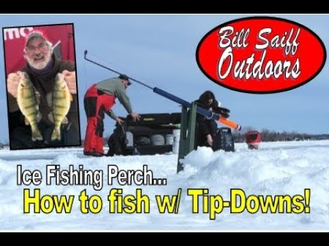 Ice Fishing Perch!  How To Use Tip-Downs!