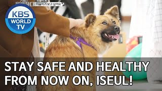 Stay safe and healthy Iseul! [Dogs are incredible/ENG/2020.03.24]