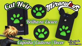 DIY Cat Noir Miraculous Ladybug: Como fazer Capinha de Celular |Caderno |Decor que brilham no escuro