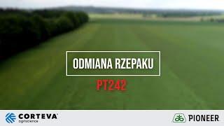Demo Farma w Rogowie - Ocena odmiany marki Pioneer PT242 rzepaku ozimego