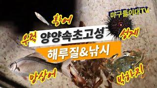 #56.마구들이대TV [양양속초고성 해루질&낚시] 양양…