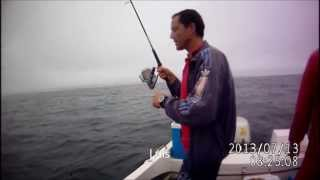 Video Pesca 13 Julho 2013 Póvoa Varzim download MP3, 3GP, MP4, WEBM, AVI, FLV Desember 2017