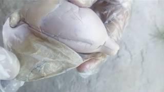 Description of male reproductive sytem (vet anatomy)