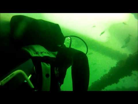 diving-ms-oil-rig-with-manta-rays