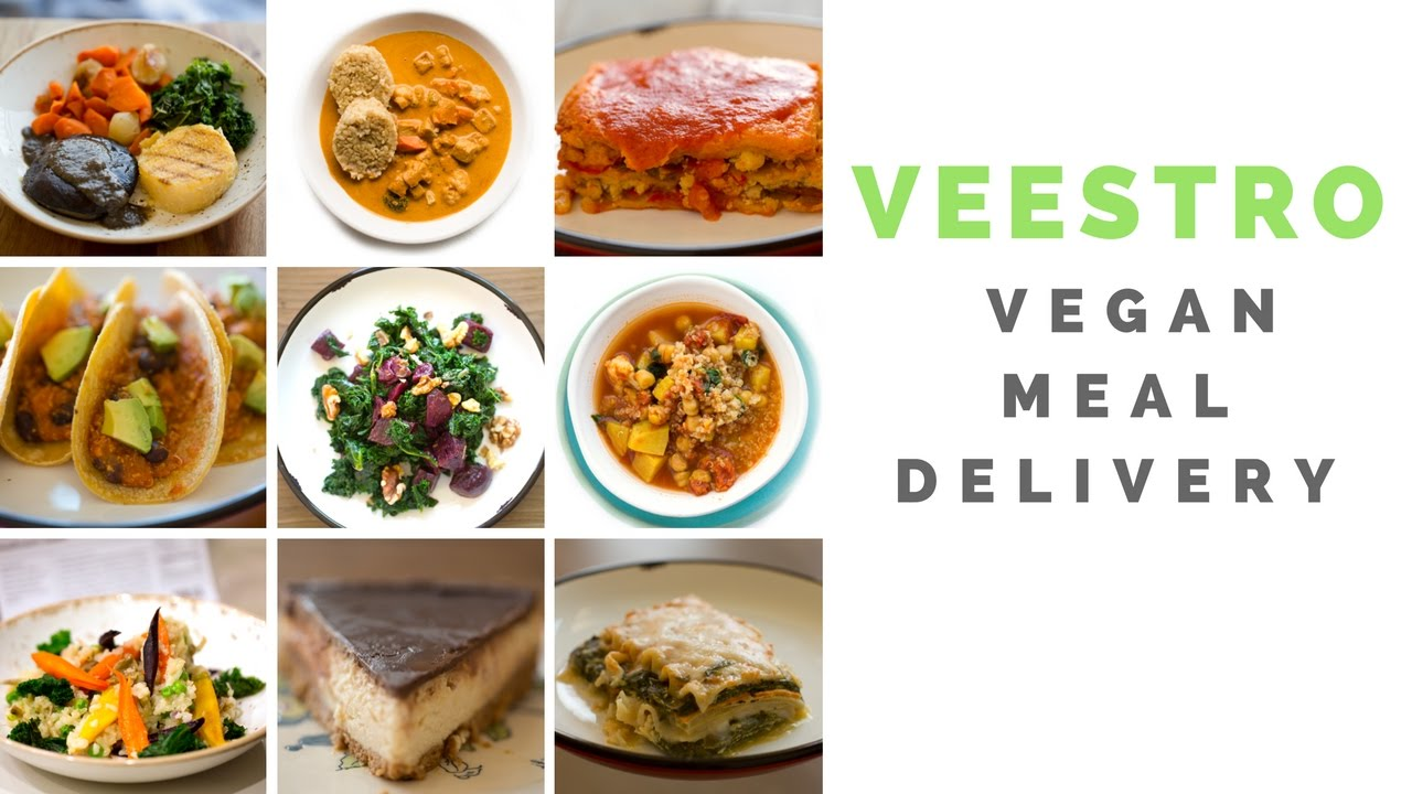 My veestro vegan meal delivery review video clips youtube my veestro vegan meal delivery review video clips forumfinder Choice Image