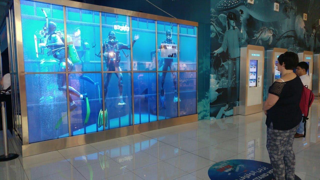 Dubai Aquarium & Underwater Zoo, Dubai Mall Amazing ...