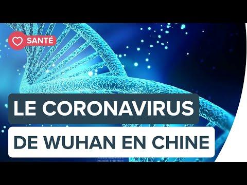 Le coronavirus de Wuhan en Chine: est-il en train de tourner vers une épidémie mondiale ?   Futura