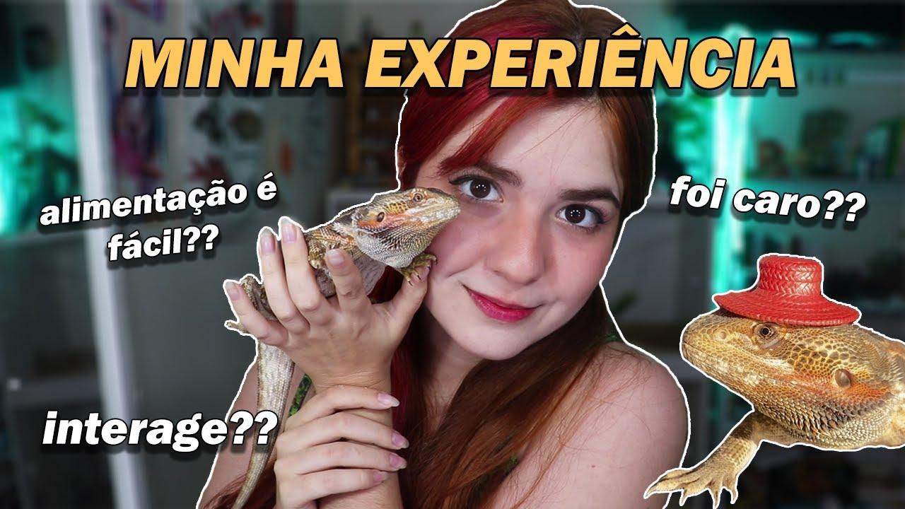 COMO É TER UM DRAGÃO BARBUDO? I Minha Experiência com o Vincent!