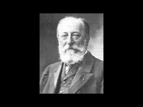 Camille Saint-Saëns-The carnival of the animals-The Swan( 1 hour )