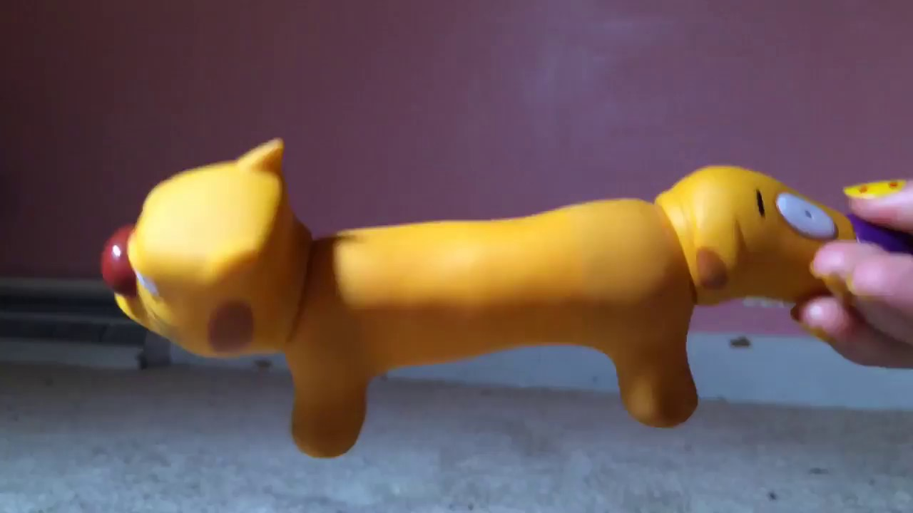 a68205973a3f Stretchy CatDog review - YouTube