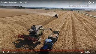 Žatva na Slovensku - Zber obilia