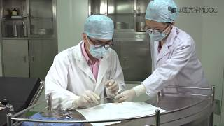 6 手术基本操作(二)——缝合、剪线
