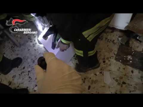 +VIDEO+ Blitz a Zingonia, controlli a tappeto alle Torri - TreviglioTv