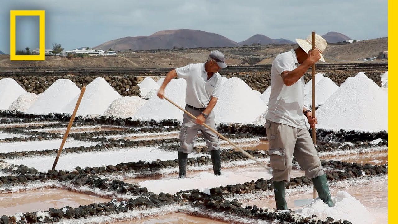 Ever Wonder How Sea Salt Is Made? Find Out Here  National Geographic