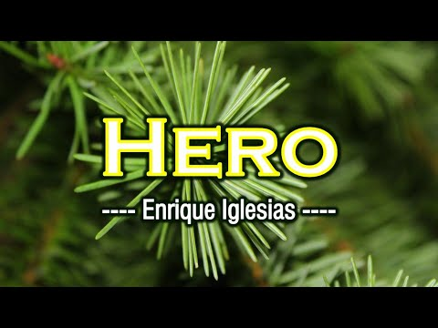 Hero - KARAOKE VERSION - Enrique Iglesias