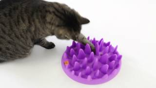 Interactive Slow Feed Bowl For Cats / Catch by Northmate