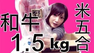 【大食い】黒毛和牛1,5キロ+ご飯5合で1人焼肉したよ!【木下ゆうか】
