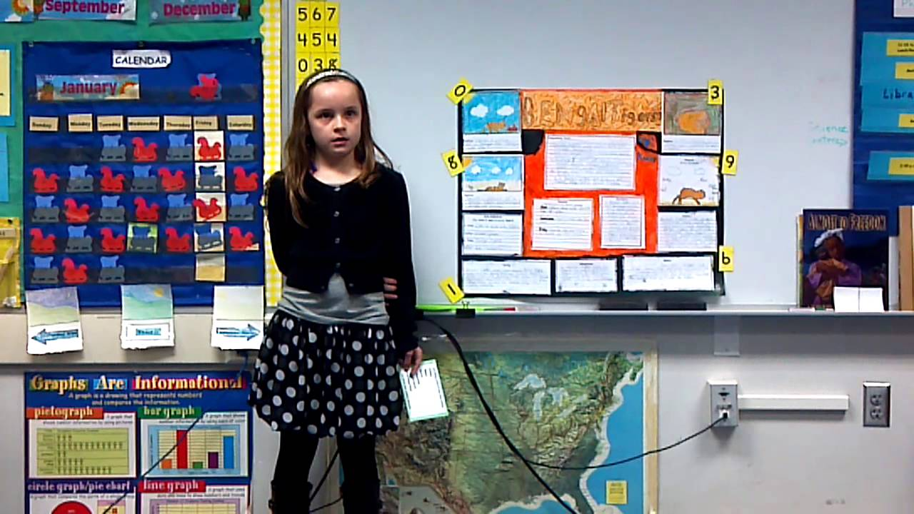 Kaeley S 2nd Grade Presentation On Bengal Tigers Youtube