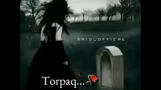 WhatsApp Ucun Qisa Status Torpag Sevdiklerimizi Aldigi Ucunmu Bele Gozel Qoxar ? 🙁