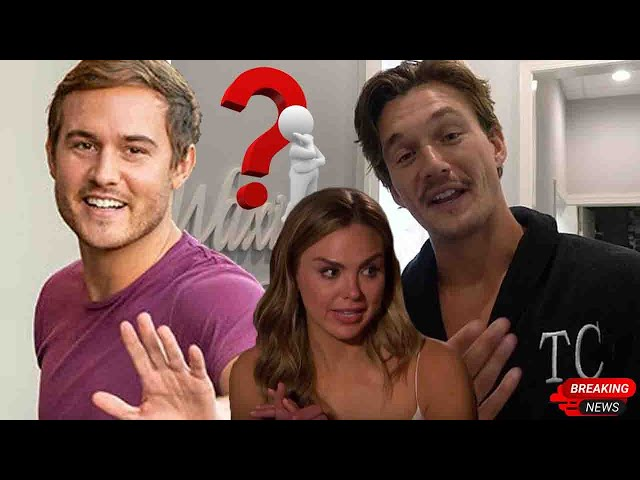 Tyler Cameron wants to bring Hannah Brown back to his dating life, when Peter Weber is intended