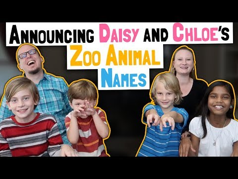 Announcing Daisy And Chloe's New Zoo Animal Names // Twin Pregnancy Update Announcement