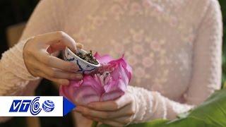 Bí quyết ướp trà sen chuẩn vị Hà thành | VTC