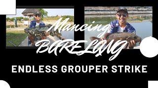 Video Fishing Vlog #8: Strike Kerapu Monster! @ Barelang Fishing Pond, Batam download MP3, 3GP, MP4, WEBM, AVI, FLV Agustus 2018