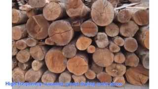 High Frequency Vacuum Wood Dryer Machine Video Show