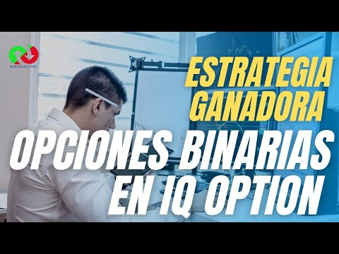 Opciones binarias expert option 2019