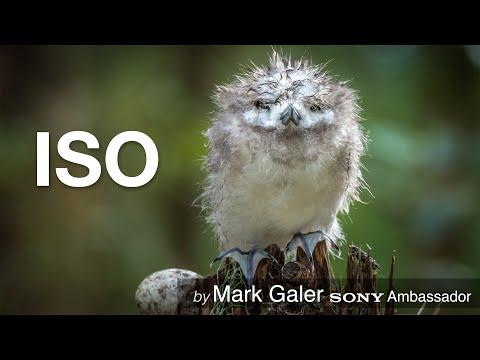 ISO Settings using