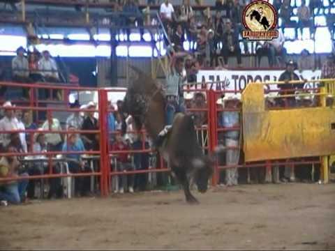 ¡¡PROMO!! TORNEO INTERESTATAL EN AYUQUILA JALISCO 5 GANDERIAS 2 OCTUBRE 2011.