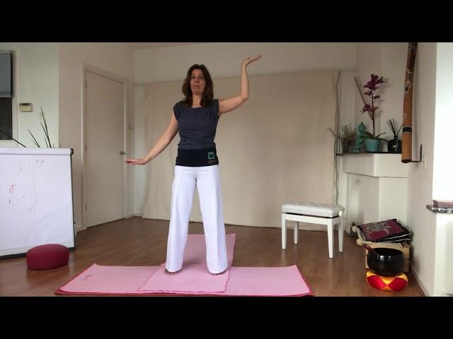 Oefening Hemelse en Aardse Qi verbinden