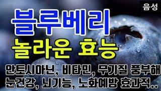 [#블루베리효과] 블루베리의 놀라운 효능 10가지 (안…