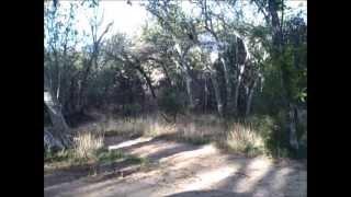 Mica Mountain via Turkey Creek Trail , Tucson Arizona (saguaro national park) 5/8/2013