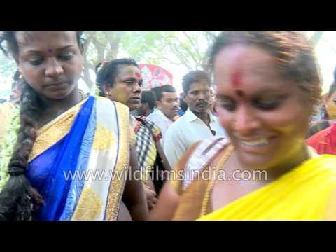 Indian transgenders break their bangles - Koovagam festival