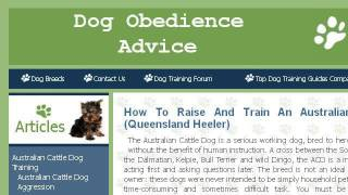 How-to Train Queensland Heeler Puppies