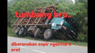 truk angkut kayu akasia puluhan ton tumbang