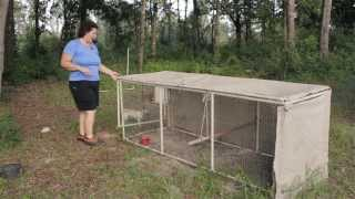 Becky gives you a tour of the chicken coops on her homestead. She gives you some ideas for the different chicken coop designs you