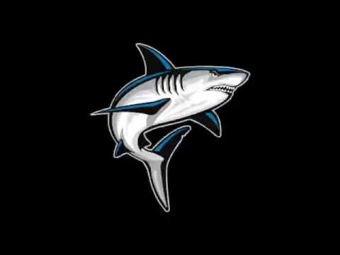 Henry Columbi  NSU University School Shark   Class of 2017 QB