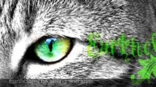 One Of The Best Warrior Cats Roleplay Sites!