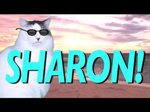 HAPPY BIRTHDAY SHARON! - EPIC CAT Happy Birthday Song