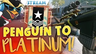 PENGUIN TO PLATINUM! #1 - Rainbow Six: Siege Live Stream