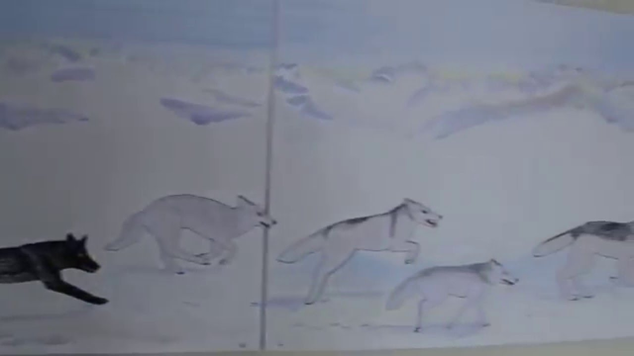 Free Wolf Coloring Pages: Learn How To Draw A Wolf - YouTube