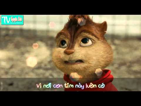 Trót yêu - Sóc Chuột