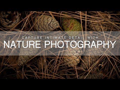 Capture Intimate Detail with Nature Photography