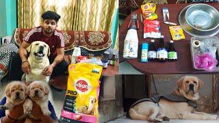 Zaffer`s Diet Plan   Labrador Diet Plan   Labrador Puppy Diet plan   Dog Full Day Diet   Dog Diet  