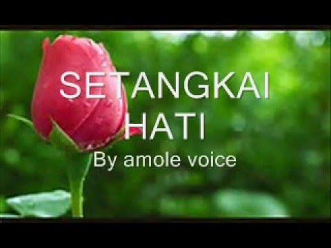 SETANGKAI HATI- amole voice